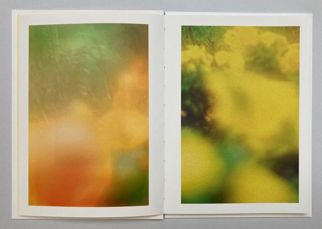 Jordan Sullivan The Autumns of Spring Jane & Jeremy photography book